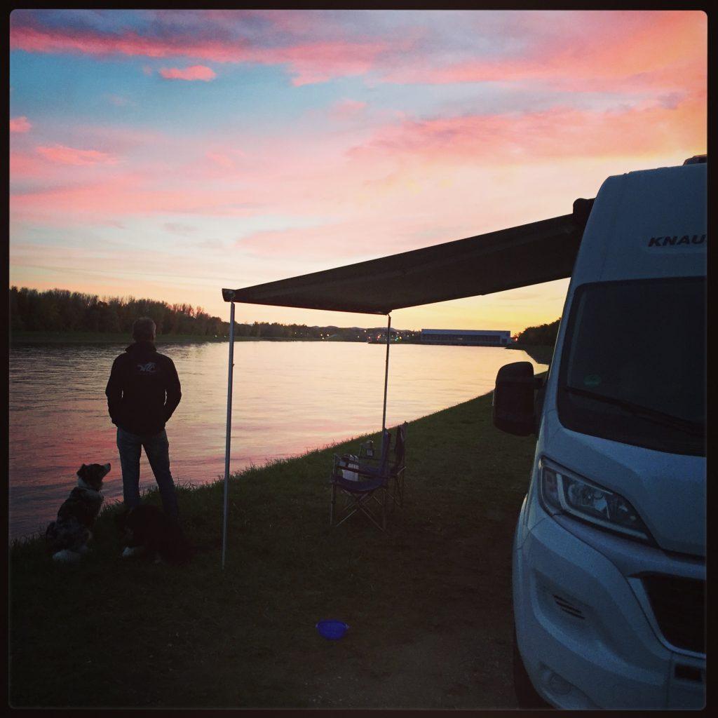 Campingbus Kastenwagen Knaus Rhein Hunde Camping