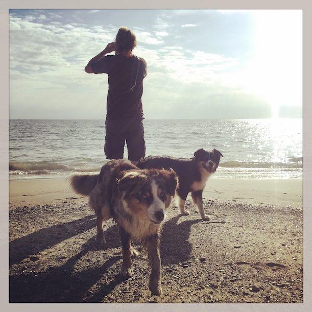 Toskana Hund camping wandern strand hundestrand Italien