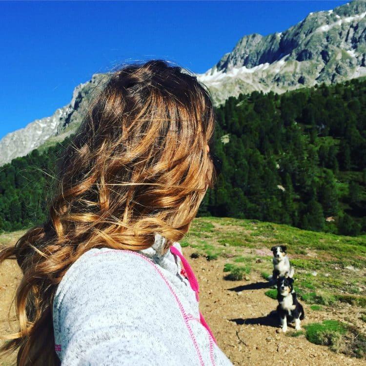 alleine reisen mit hund Campingbus
