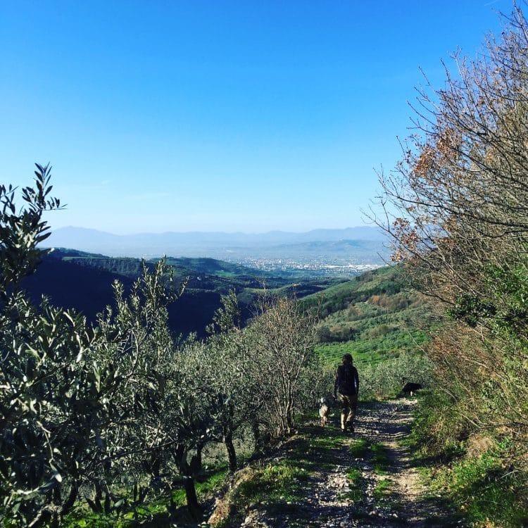 Umbrien wandern hund camping Italien