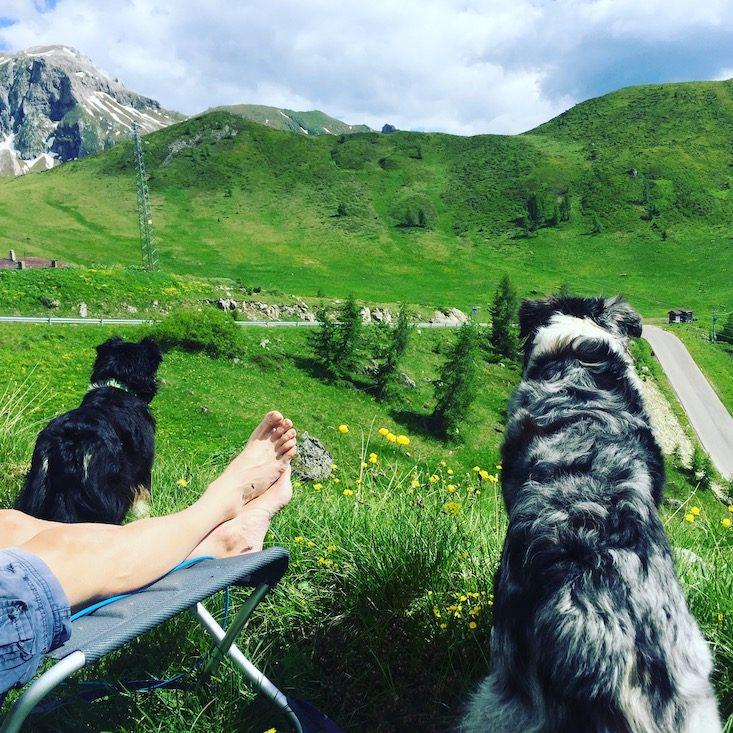 Dolomiten Passo Giau Camping Hund Fahrrad Pass