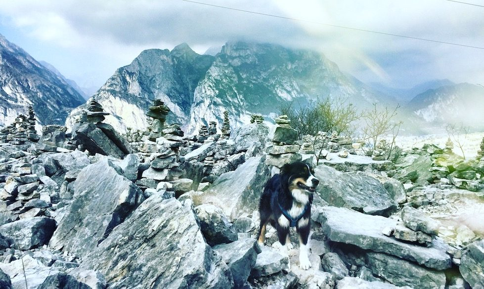 Gardasee Torbole Wandern Hund Camping Februar