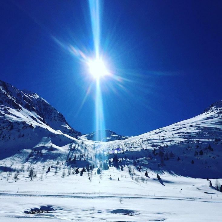 Osttirol Defreggental Staller Sattel Hund Wintercamping Schneeschuhe