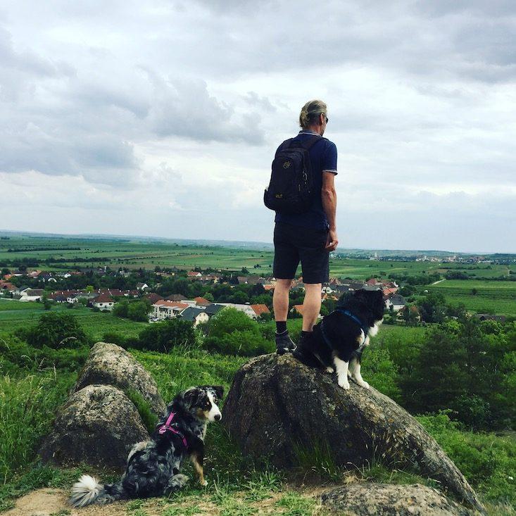 Hundemensch Hundeliebe Camping Hund Niederösterreich