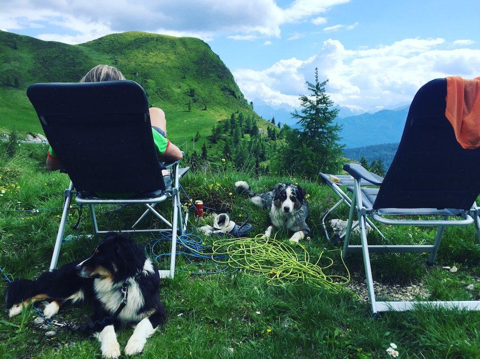 Dolomiten Camping Hund Rennradfahrer Passstrasse Pässe Campingbus