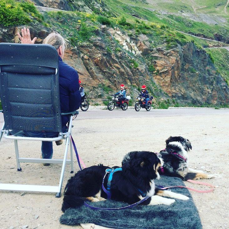 Mopedmarathon Ötztal Hund Camping Pass Pässe Passstraße Radfahrer