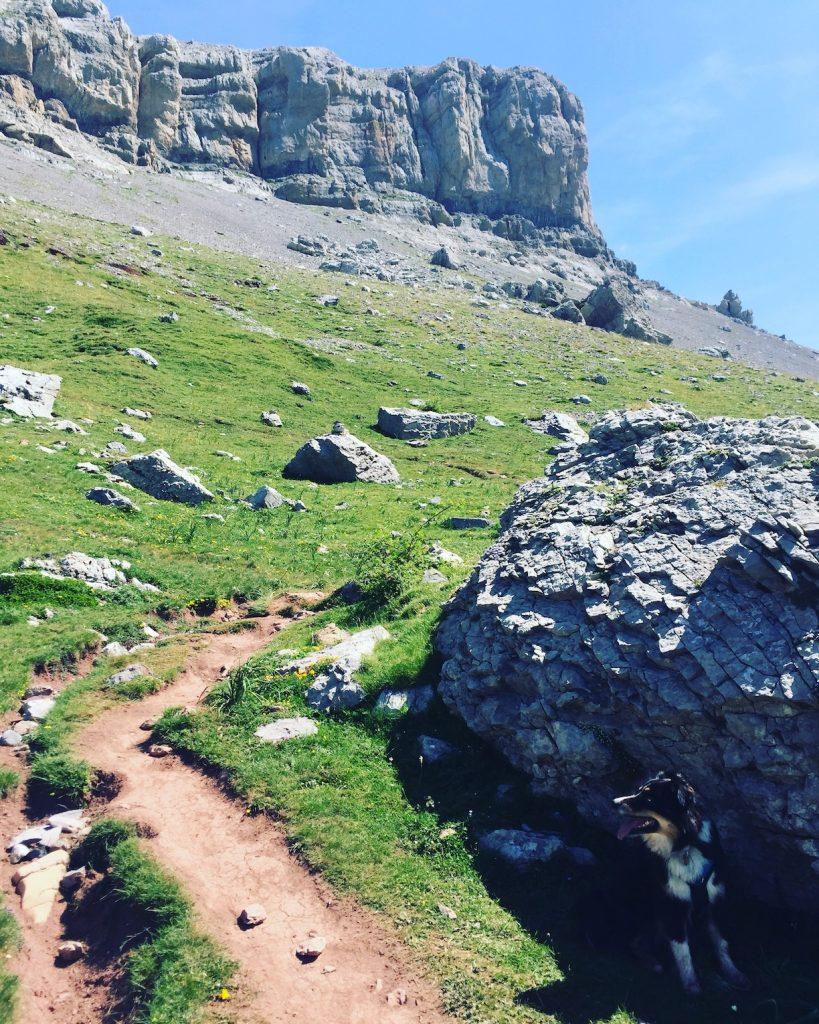 Castillo d'acher Hecho-Tal Hund Wanderung