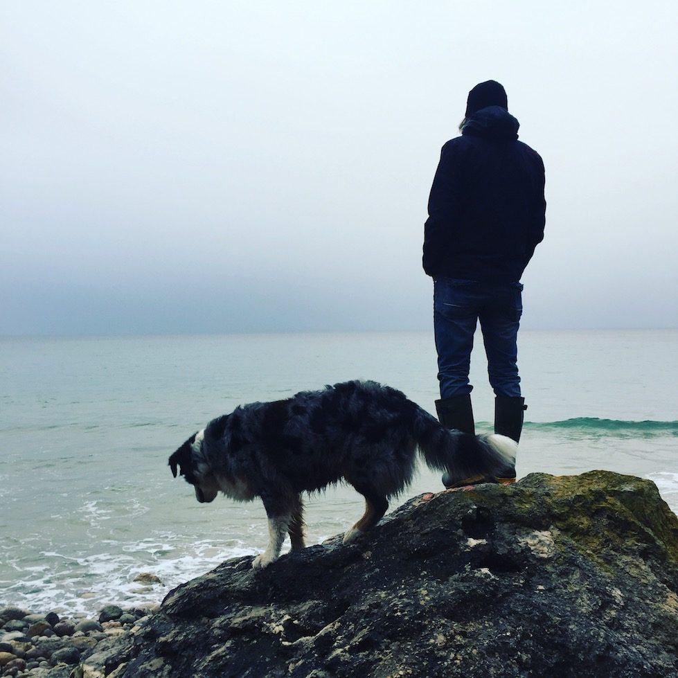 Gummistiefel Must-Have Camping Zubehör Hund