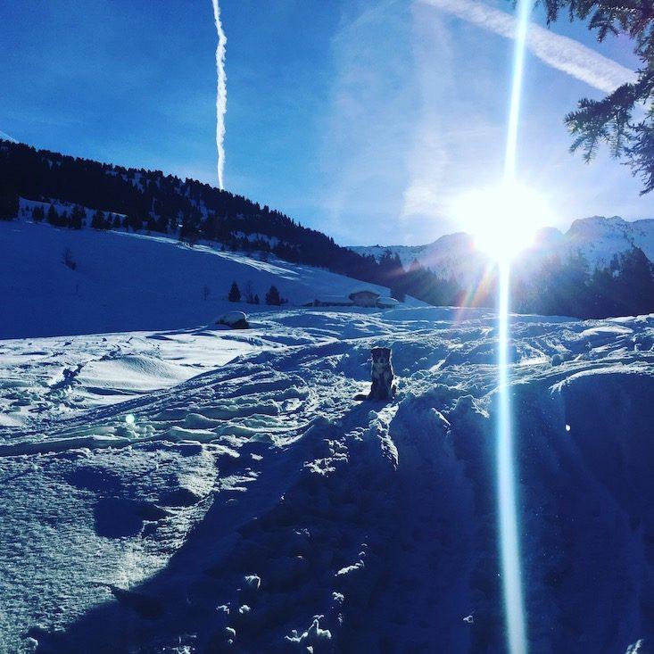 Schneeschuhe Kelchsau Langer Grund Brixental