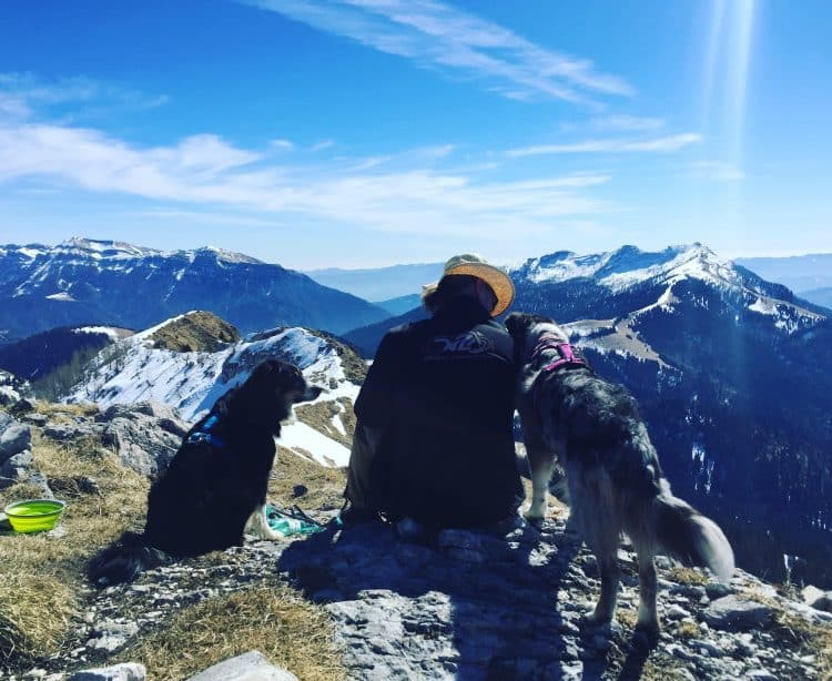Passo Brecon Lagorai Trentino Camping Hund Wandern