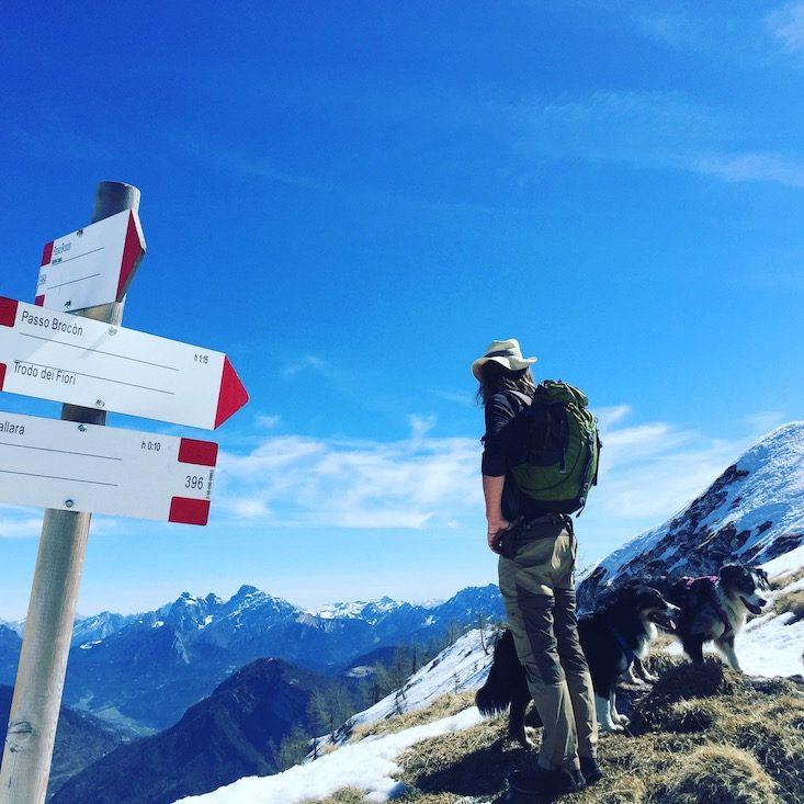 Passo Brecon Lagorai Trentino wandern Hund col della Boia Camping