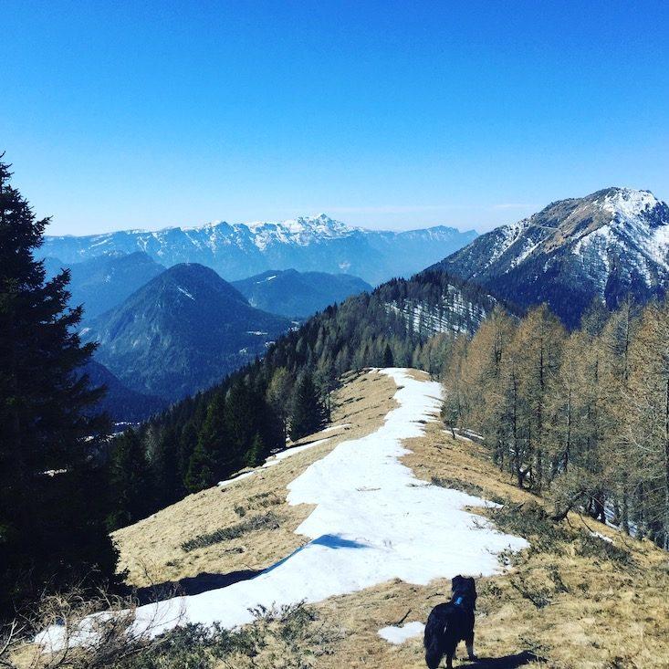 passo Brecon Monte Timoncello Lagorai Trentino Wanderung Hund Camping