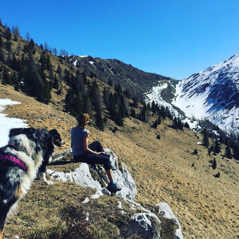 Passo Brocon Monte Timoncello Lagorai Trentino Hund Camping Wanderung
