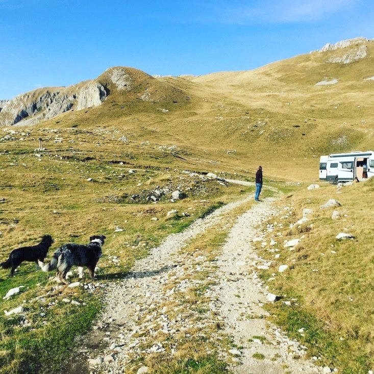 Montenegro Durmitor Camping Wohnmobil Hund Kontraste