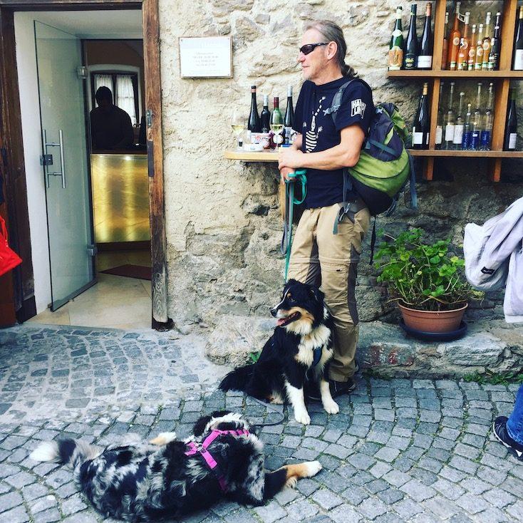 Dürnstein Wein Wanderung Hund