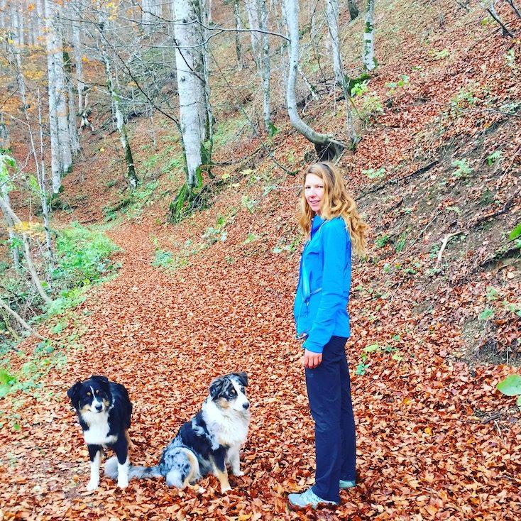 Montenegro Biogradska Gora Hund Camping Wohnmobil wandern Kontraste