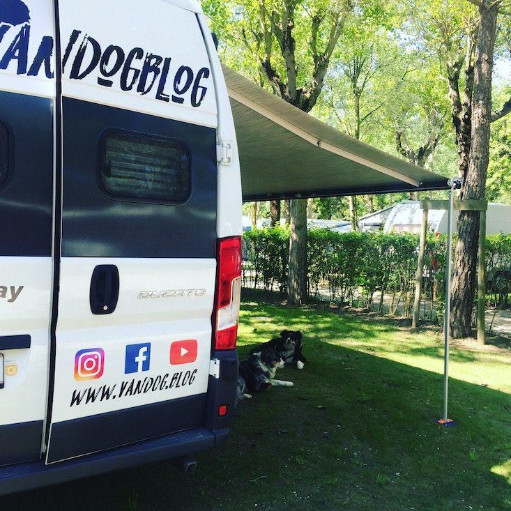 Europa Camping Village Campingplatz Hund Cavallino