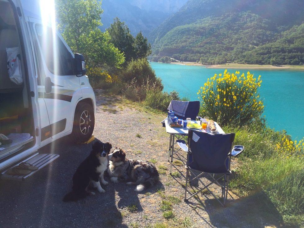 Kastenwagen Vandog Blog Hund Camping Frankreich Verdonschlucht