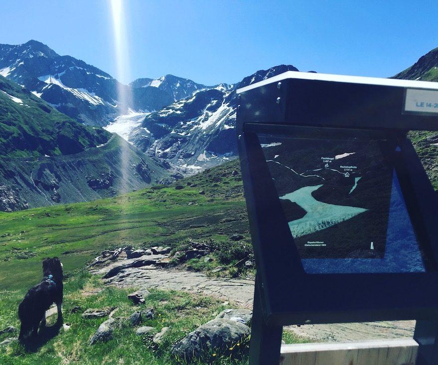 Kaunertal Gletscher Gepatschferner Gletscherlehrpfad Wandern Hund Camping