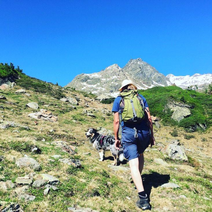 Wandern mit Hund Wanderung Kaunertal Gletscherstraße