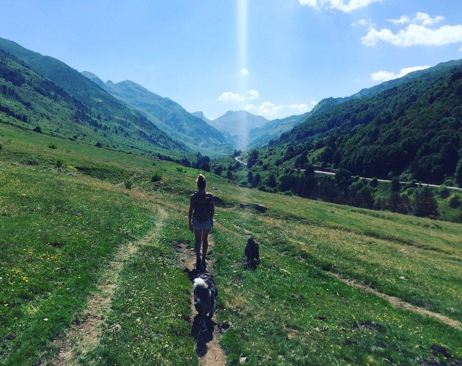 Hecho Wandern Aragon Hund Camping frei stehen