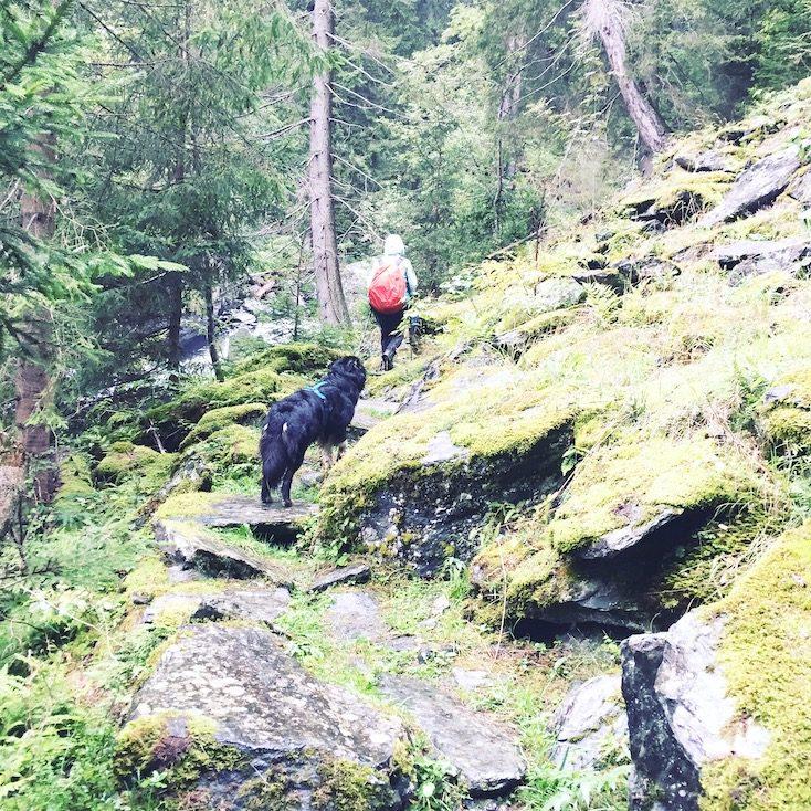 Alpe-Adria-Trail mit Hund Rabischschlucht Kärnten wandern Wanderung Weitwandern