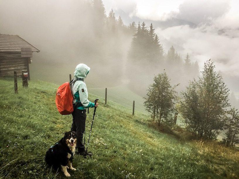Weitwandern hund Kärnten Österreich Alpen
