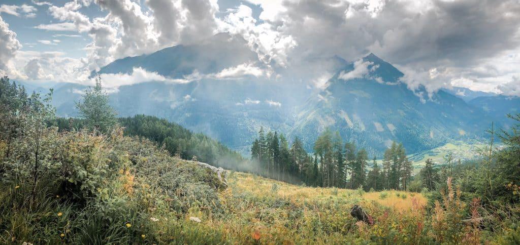 Alpe-Adria-Trail Weitwandern Hund Wanderung Kärnten