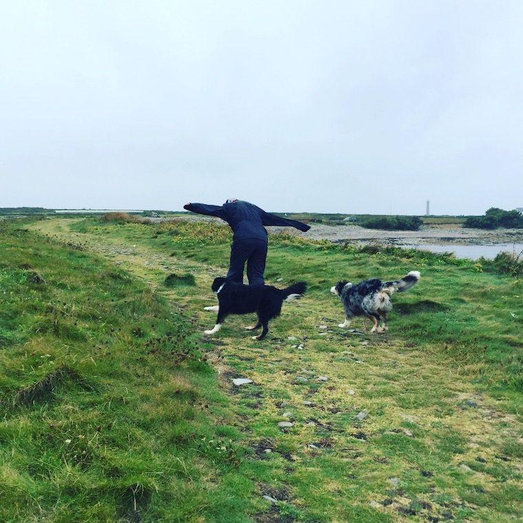 Frankreich Normandie La Manche Cotentin Hund Camping Wildcamping