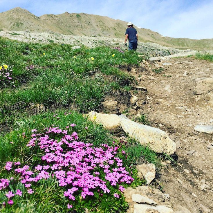 Wandern mit Hund Alpen Frankreich Wanderung