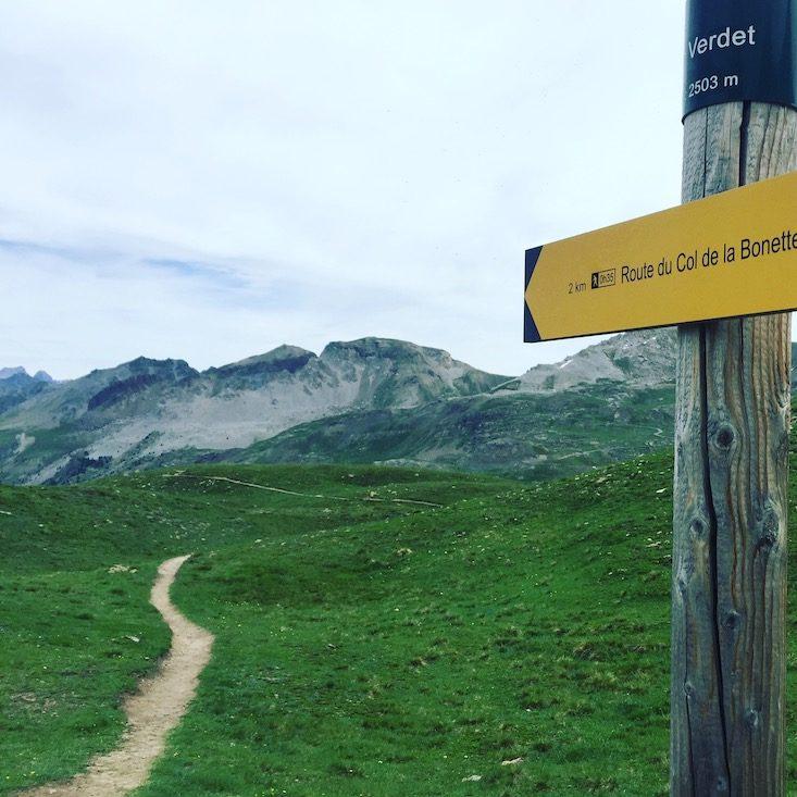 Route de la Bonette Wandern Lac Verdet Hund Frankreich Alpen