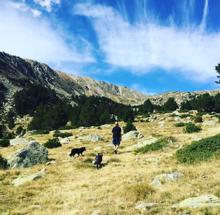Cerdanya Pyrenäen Katalonien Spanien Wandern Hund