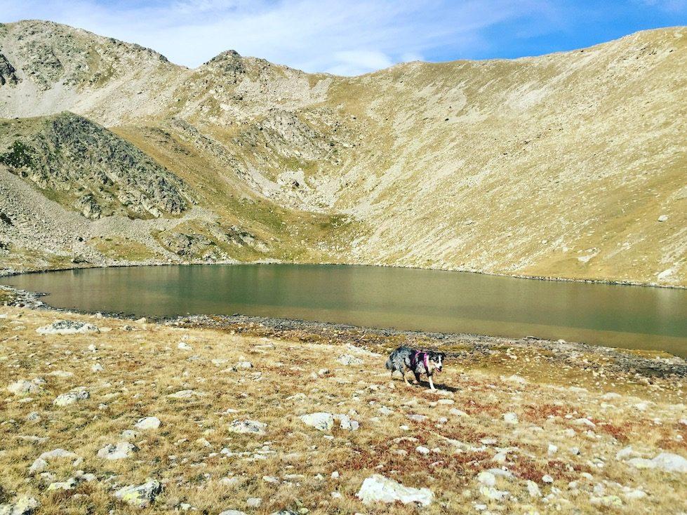 Gran Estany de la Muga Certanya Wandern mit Hund Pyrenäen Katalonien Camping Wohnmobil