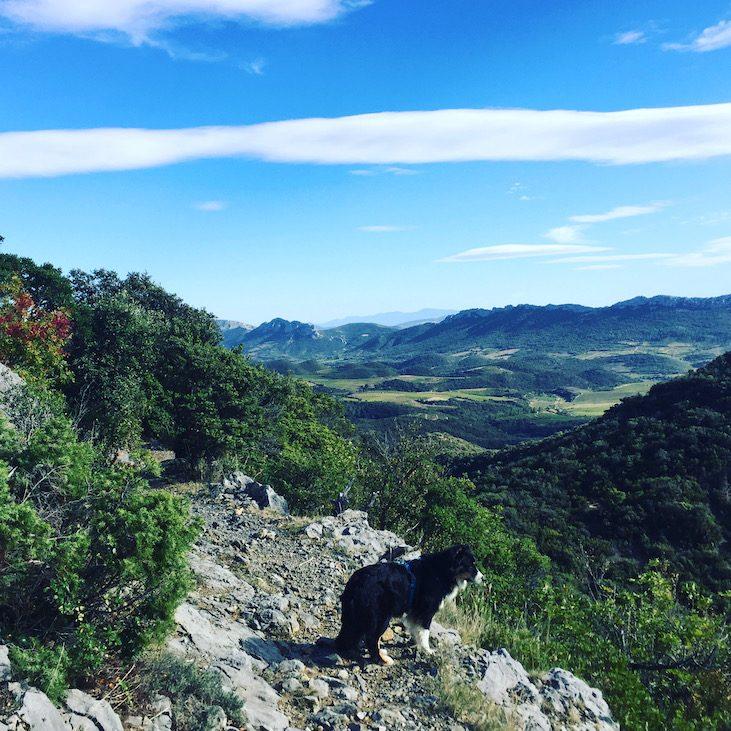 Languedoc Roussillon Wandern mit Hund Frankreich Südfrankreich Weiterwandern Fernwanderweg Sentier Cathare Aude Pays Cathare GR 367