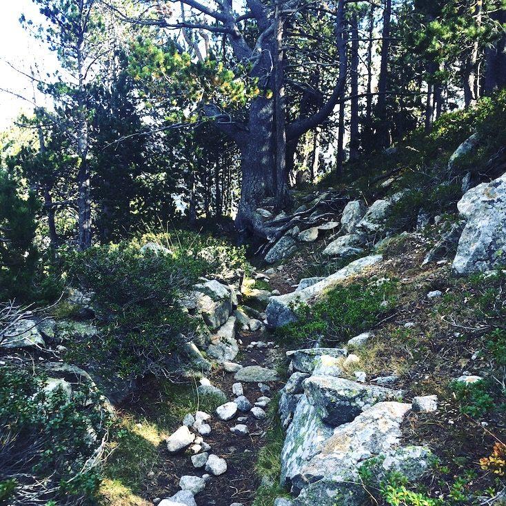 Wanderung wandern Tessa Plana del Lles Estany Gran de la Muga Pyrenäen Spanien