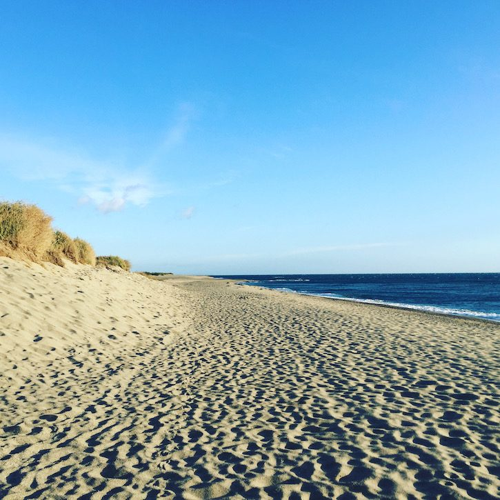 Languedoc Roussillon Le Brasilia Südfrankreich Frankreich Canet-Plage Camping mit Hund Urlaub Mittelmeer Sandstrand