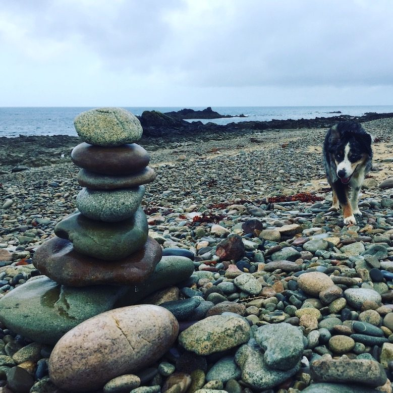 Normandie La Manche Wandern mit Hund Camping Wildcamping Australian Shepherd Atlantik