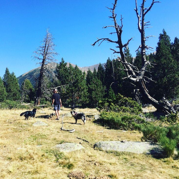Wandern mit Hund Spanien Cerdanya Katalonien Tessa Plana de Lles Estany de la Muga
