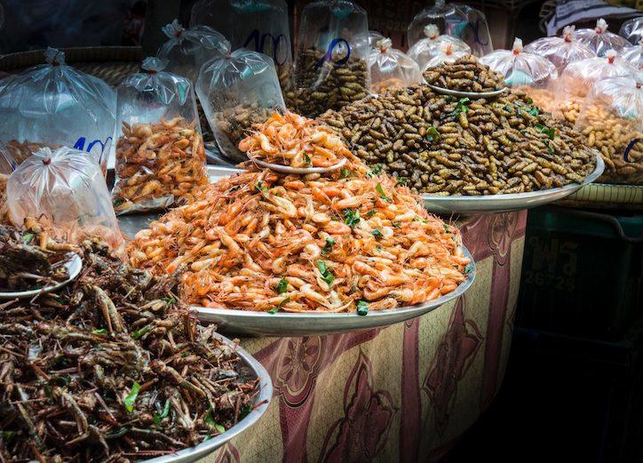 Insekten-Protein Markt Thailand Asien Insekten Essen Entomophagie
