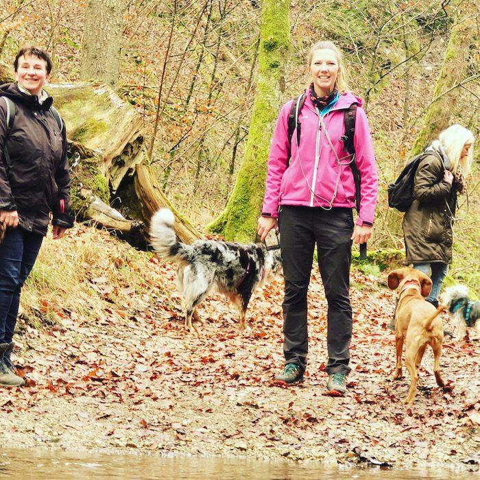 ErlebnisHunde, Wandern mit Hund Starnberg Fünf-Seen-Land geführte Wanderung Hundewanderung Maisinger Schlucht