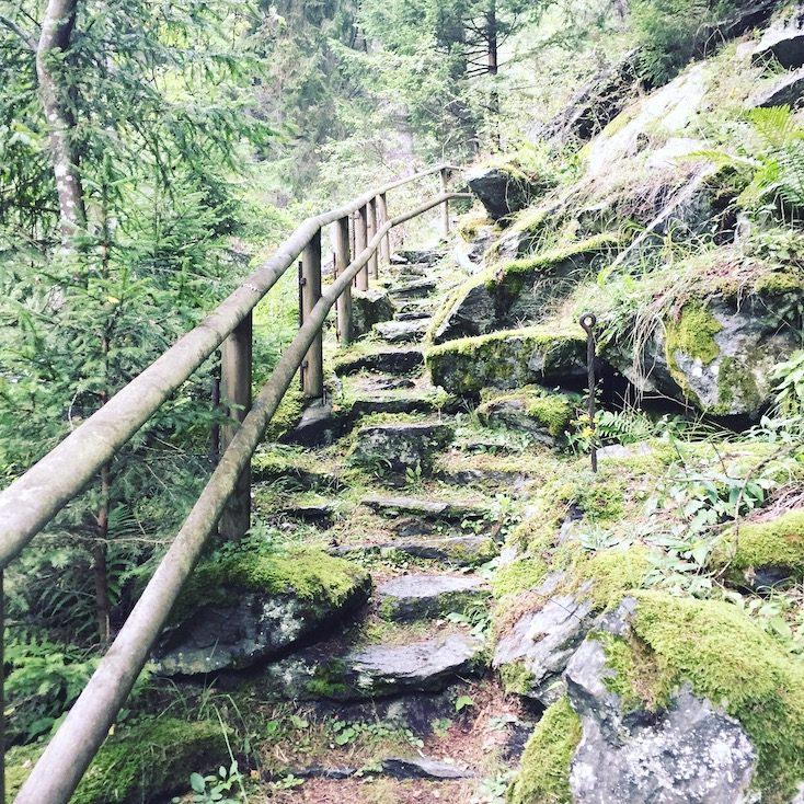 Alpe-Adria-Trail Hund Wandern Wanderung Kärnten Rabischschlucht
