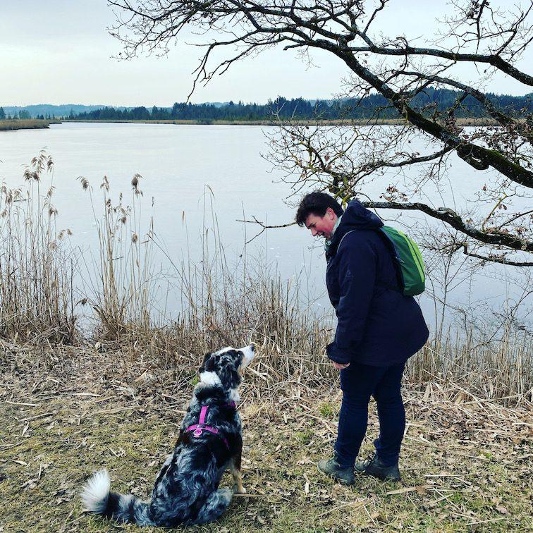 ErlebnisHunde Wandern mit Hund Maisinger See Abenteuer Gruppenwanderung Rundweg Starnberg Für-Seen-Land Bayern