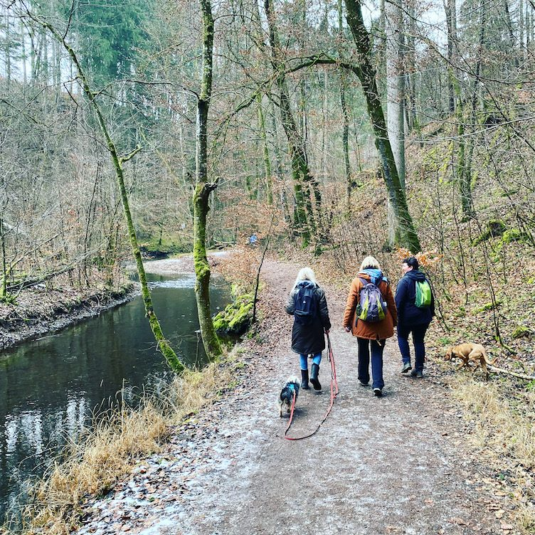 ErlebnisHunde Unterwegs mit Hund Wandern Hundewanderung Gruppenwanderung Maising Maisinger Schlucht Bayern Fünf-Seen-Land Starnberg