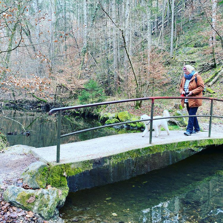 ErlebnisHunde Wandern mit Hund Hundewanderung Gruppenwanderung Bayern Starnberg Fünf-Seen-Land Maisinger Schlucht