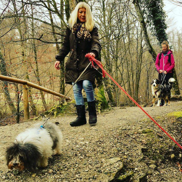 ErlebnisHunde, Fünf-Seen-Land, Bayern Starnberg, Maisinger Schlucht Hundewanderung Wandern mit Hund
