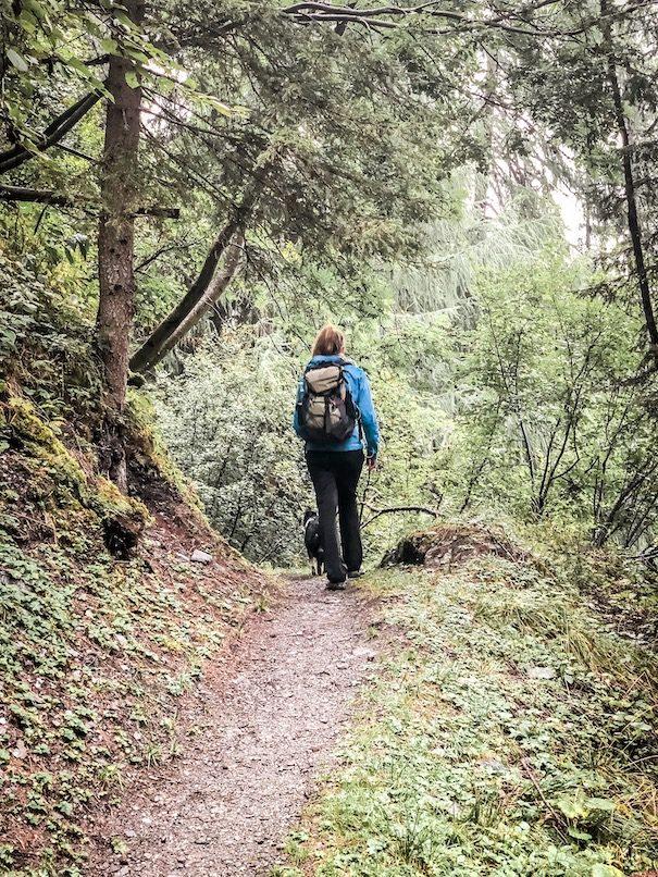 Alpe-Adria-Trail Weitwandern Hund Fernwanderweg Kärnten Gepäcktransport