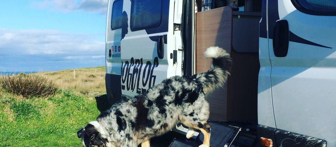 Hundetreppe Rampe Einstiegshilfe Wohnmobil Campingbus PKW
