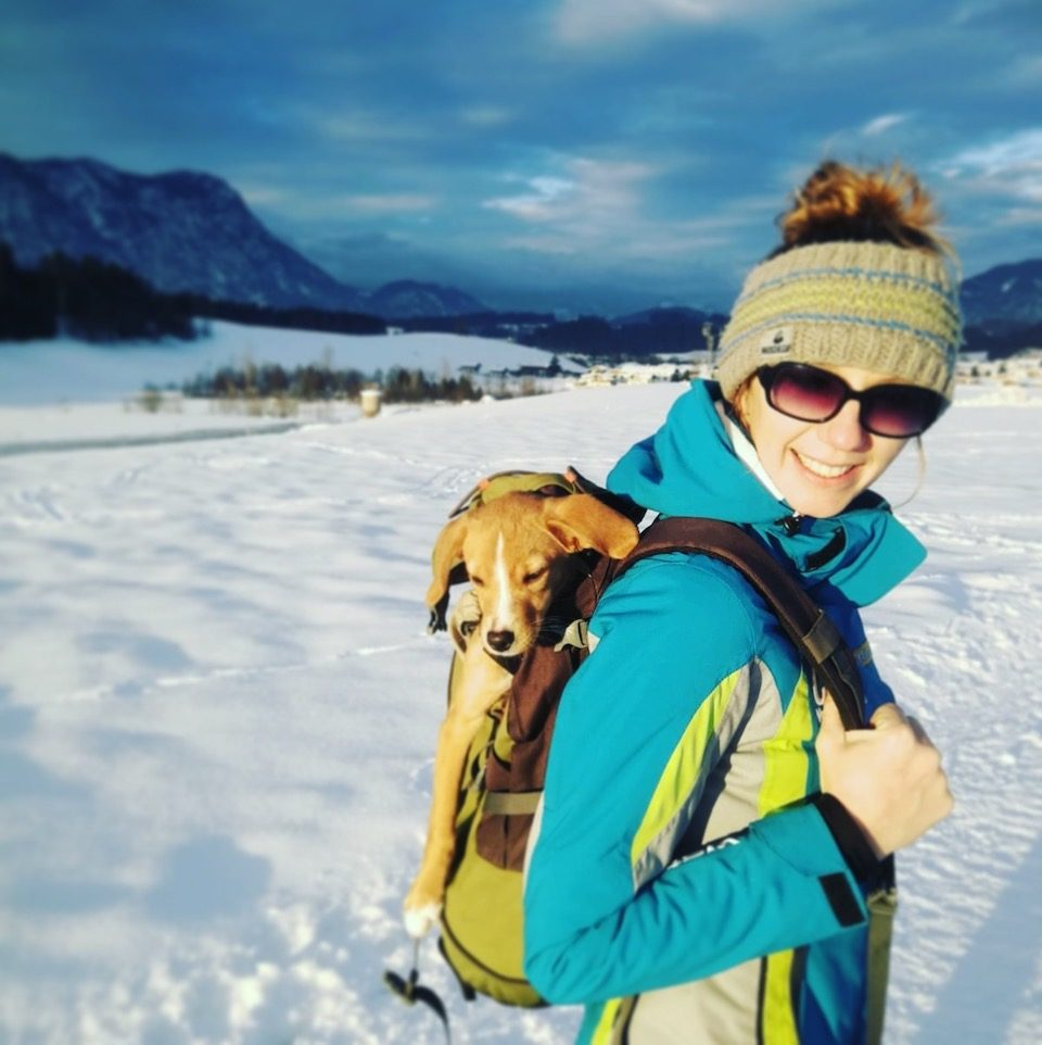 wandern mit Hund Hunderucksack reisen mit hund