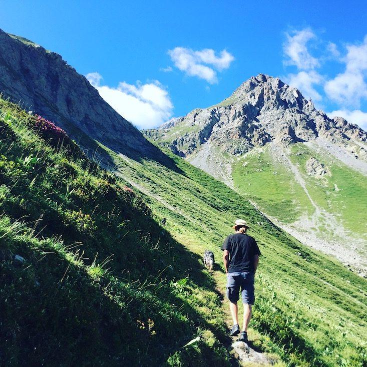 Col du Galibier Frankreich Alpen Camping mit Hund wandern mit Hund Alpenpässe schönster Ort