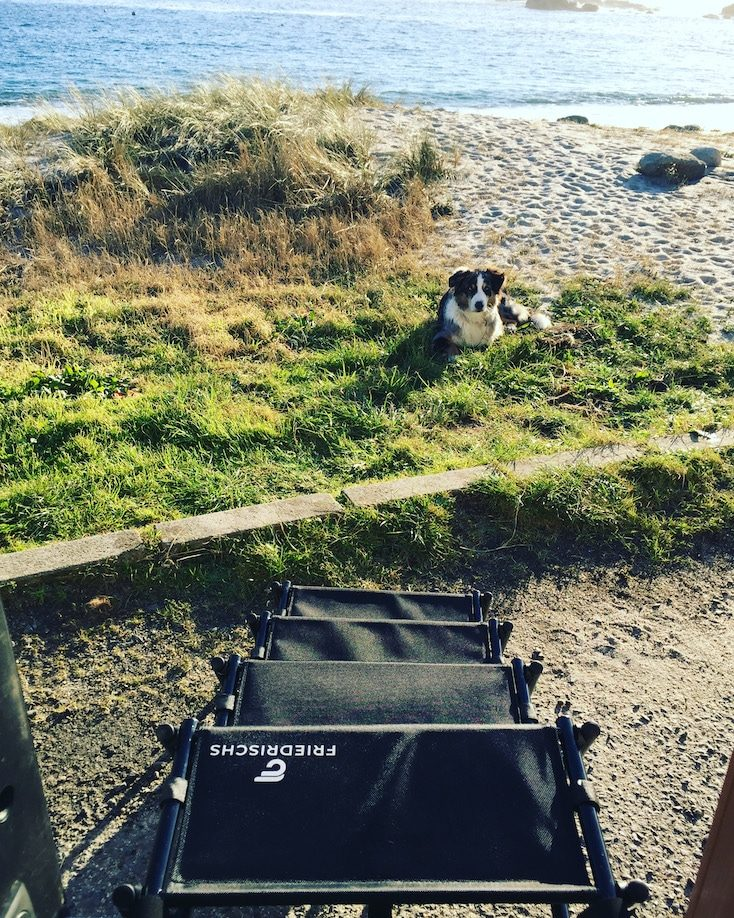 Friedrischs Hundetreppe Hunderampe Hundezubehör Hundeleiter Camping mit Hund Wohnmobil